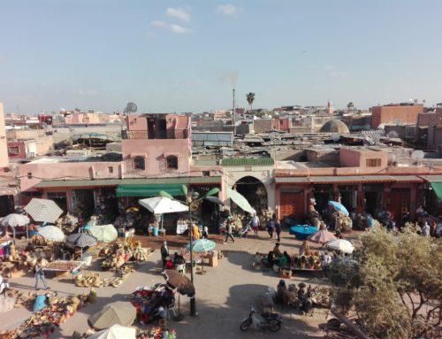 Il mal d'Africa esiste e noi lo plachiamo a Marrakech.